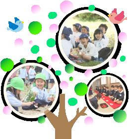 上野台幼稚園年間行事ー春